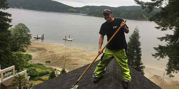 roof-moss-removal